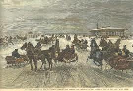 Coney Island Horse Drawn Sleighs